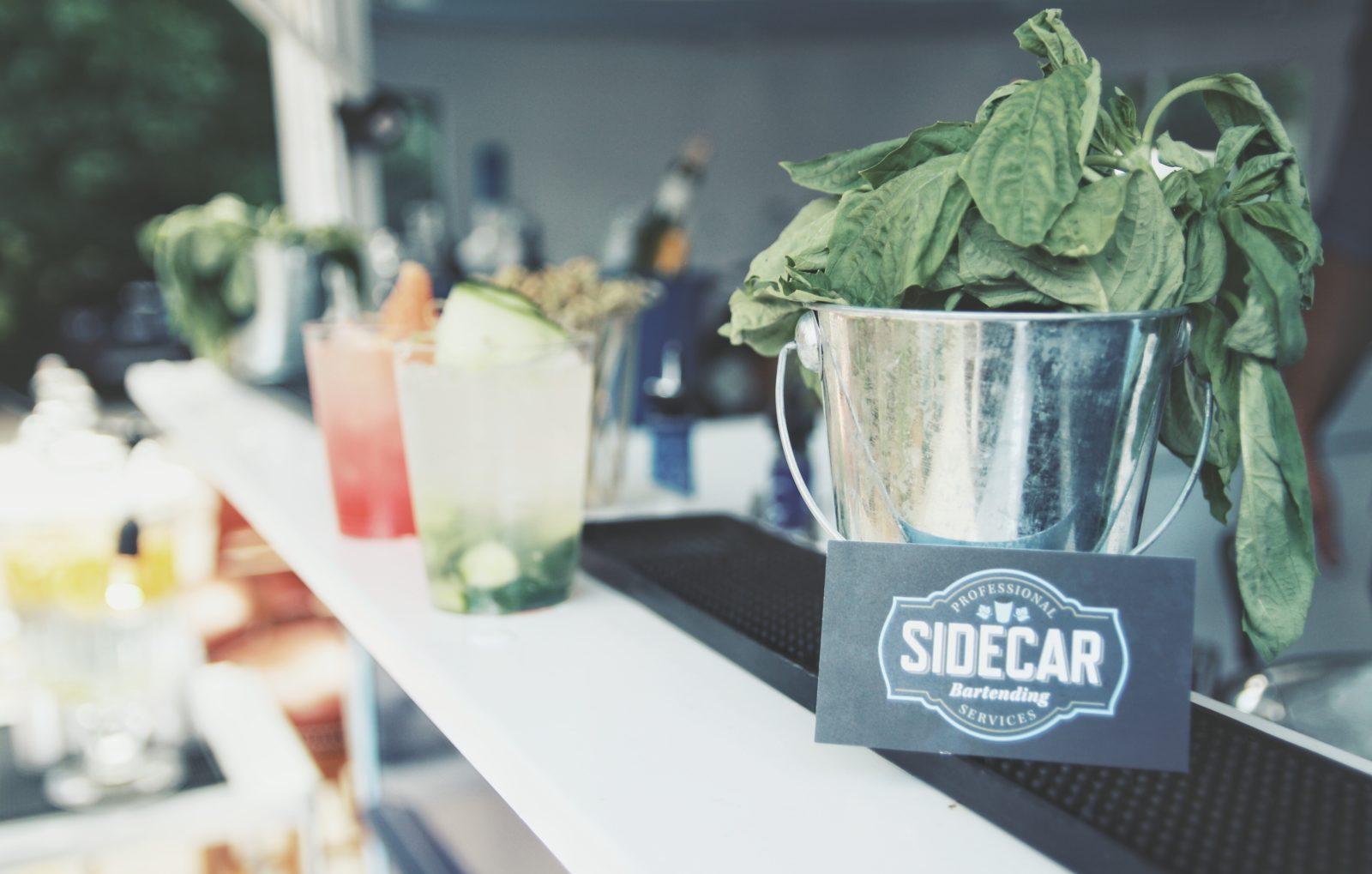 sidecar-ponybar-image-6