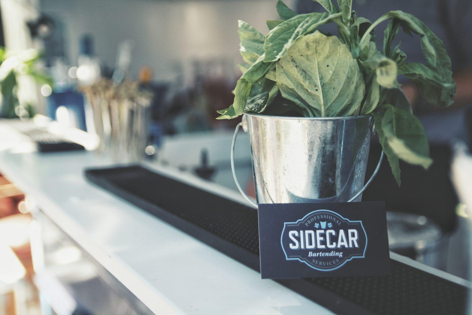 sidecar-ponybar-image-4